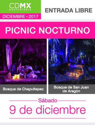 PICNIC_BOSQUES (7).png