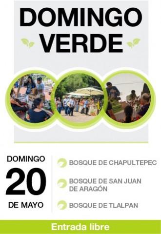 Domingo Verde