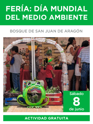 feria_ambiental_311x411.png