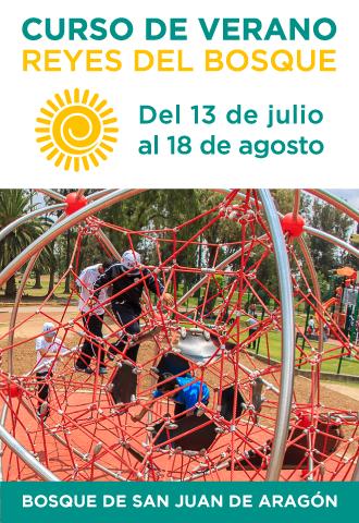 pagina_sedema_curso_verano.png