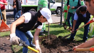 Realiza Sedema quinta jornada de Reto Verde en Coyoacán