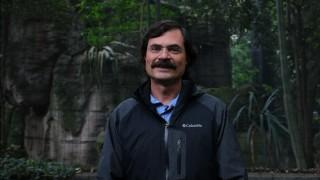 Habrá Cóndor de California en Zoológico de San Juan de Aragón