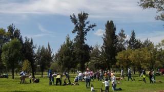 Avanza Reto Verde con un millón 367 mil 711 plantas y árboles sembrados