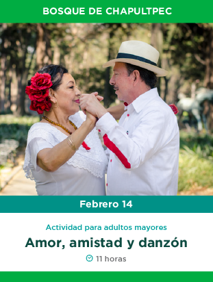BANNERS_febrero_web-01.png