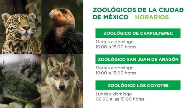 H. Zoológicos