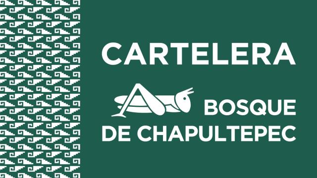 Bosque de Chapultepec 🦗