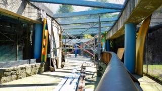 Avanza rehabilitación del Zoológico de Chapultepec
